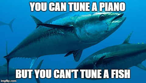 YOU CAN TUNE A PIANO BUT YOU CAN'T TUNE A FISH | made w/ Imgflip meme maker