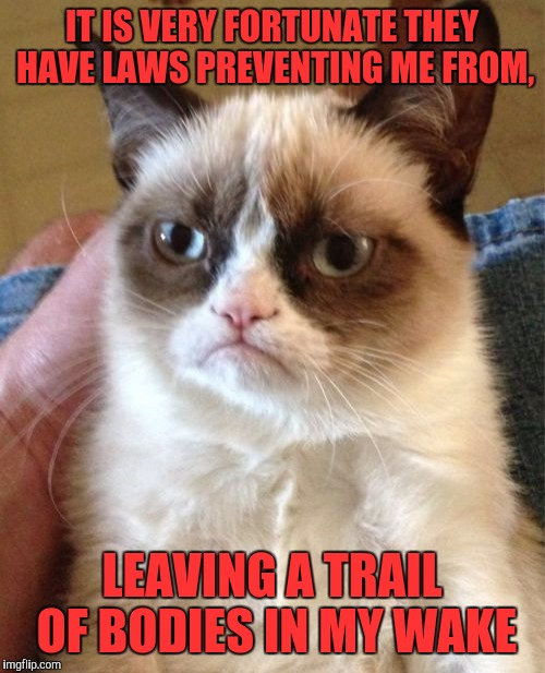 It's been a rough couple of weeks, what can I say?... | IT IS VERY FORTUNATE THEY HAVE LAWS PREVENTING ME FROM, LEAVING A TRAIL OF BODIES IN MY WAKE | image tagged in memes,grumpy cat,sewmyeyesshut,funny memes | made w/ Imgflip meme maker