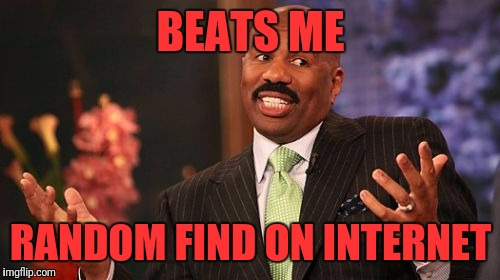 Steve Harvey Meme | BEATS ME RANDOM FIND ON INTERNET | image tagged in memes,steve harvey | made w/ Imgflip meme maker