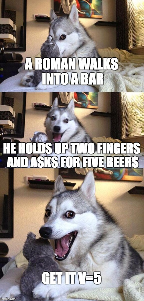 A Clever Joke | A ROMAN WALKS INTO A BAR HE HOLDS UP TWO FINGERS AND ASKS FOR FIVE BEERS GET IT V=5 | image tagged in memes,bad pun dog | made w/ Imgflip meme maker
