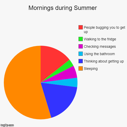 Mornings during Summer | Mornings during Summer | Sleeping, Thinking about getting up, Using the bathroom, Checking messages, Walking to the fridge, People bugging y | image tagged in funny,pie charts | made w/ Imgflip pie chart maker