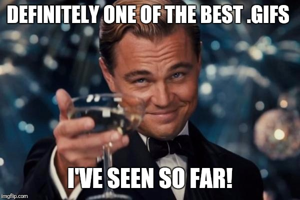 Leonardo Dicaprio Cheers Meme | DEFINITELY ONE OF THE BEST .GIFS I'VE SEEN SO FAR! | image tagged in memes,leonardo dicaprio cheers | made w/ Imgflip meme maker
