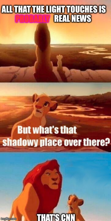 Simba Shadowy Place Meme | ALL THAT THE LIGHT TOUCHES IS                         REAL NEWS PROBABLY THAT'S CNN | image tagged in memes,simba shadowy place | made w/ Imgflip meme maker