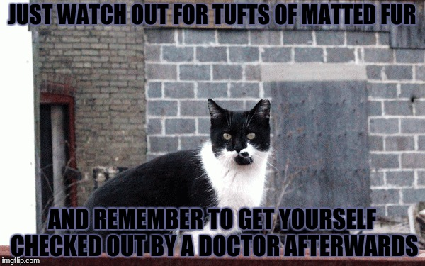 JUST WATCH OUT FOR TUFTS OF MATTED FUR AND REMEMBER TO GET YOURSELF CHECKED OUT BY A DOCTOR AFTERWARDS | made w/ Imgflip meme maker