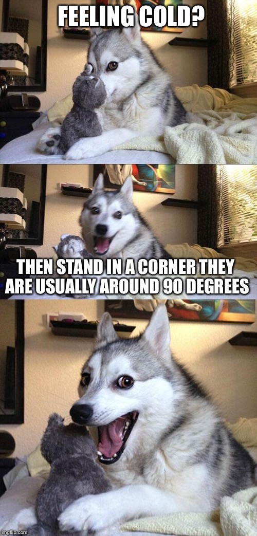 Bad Pun Dog Meme | FEELING COLD? THEN STAND IN A CORNER THEY ARE USUALLY AROUND 90 DEGREES | image tagged in memes,bad pun dog | made w/ Imgflip meme maker