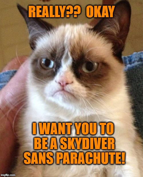 Grumpy Cat Meme | REALLY??  OKAY I WANT YOU TO BE A SKYDIVER SANS PARACHUTE! | image tagged in memes,grumpy cat | made w/ Imgflip meme maker