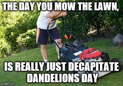 mowing the lawn | THE DAY YOU MOW THE LAWN, IS REALLY JUST DECAPITATE DANDELIONS DAY | image tagged in mowing the lawn | made w/ Imgflip meme maker