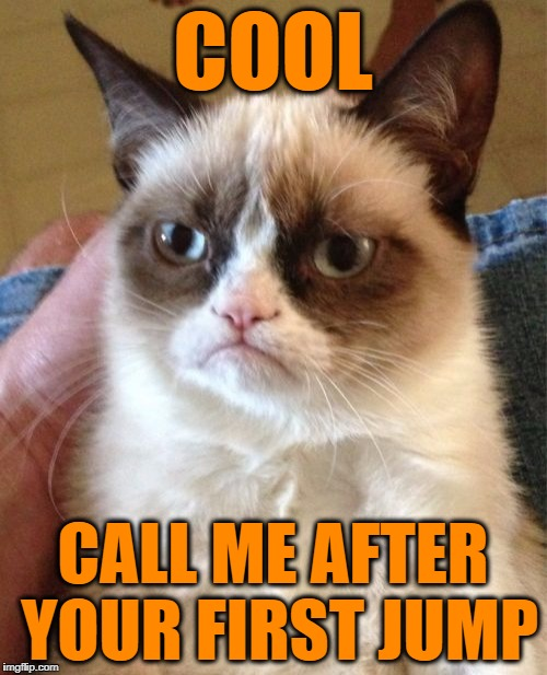 Grumpy Cat Meme | COOL CALL ME AFTER YOUR FIRST JUMP | image tagged in memes,grumpy cat | made w/ Imgflip meme maker