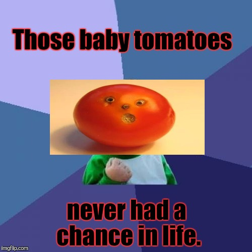 Success Kid Meme | Those baby tomatoes never had a chance in life. | image tagged in memes,success kid | made w/ Imgflip meme maker