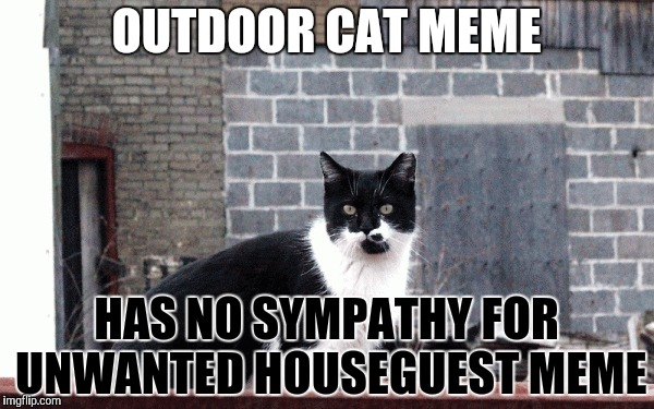 OUTDOOR CAT MEME HAS NO SYMPATHY FOR UNWANTED HOUSEGUEST MEME | made w/ Imgflip meme maker