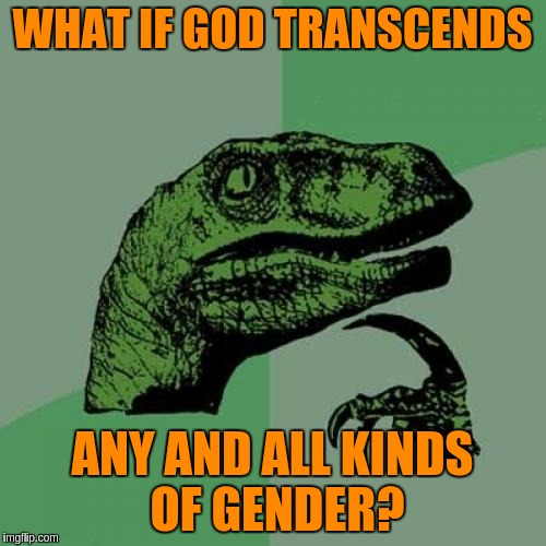 Philosoraptor Meme | WHAT IF GOD TRANSCENDS ANY AND ALL KINDS OF GENDER? | image tagged in memes,philosoraptor | made w/ Imgflip meme maker