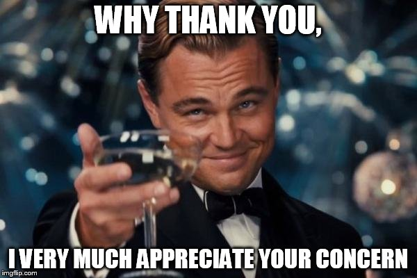 Leonardo Dicaprio Cheers Meme | WHY THANK YOU, I VERY MUCH APPRECIATE YOUR CONCERN | image tagged in memes,leonardo dicaprio cheers | made w/ Imgflip meme maker