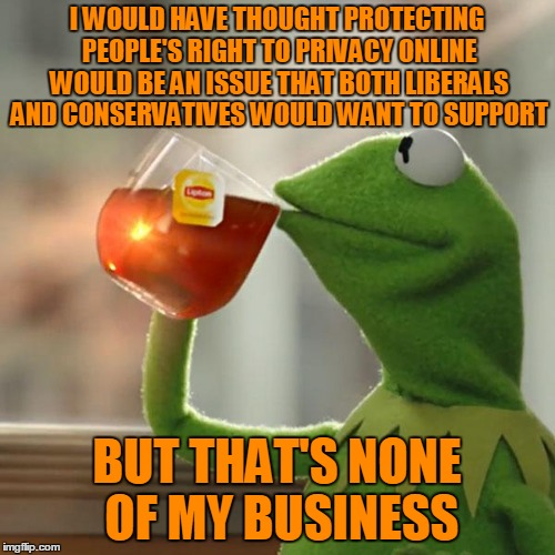 But Thats None Of My Business Meme | I WOULD HAVE THOUGHT PROTECTING PEOPLE'S RIGHT TO PRIVACY ONLINE WOULD BE AN ISSUE THAT BOTH LIBERALS AND CONSERVATIVES WOULD WANT TO SUPPOR | image tagged in memes,but thats none of my business,kermit the frog | made w/ Imgflip meme maker
