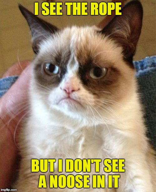 Grumpy Cat Meme | I SEE THE ROPE BUT I DON'T SEE A NOOSE IN IT | image tagged in memes,grumpy cat | made w/ Imgflip meme maker