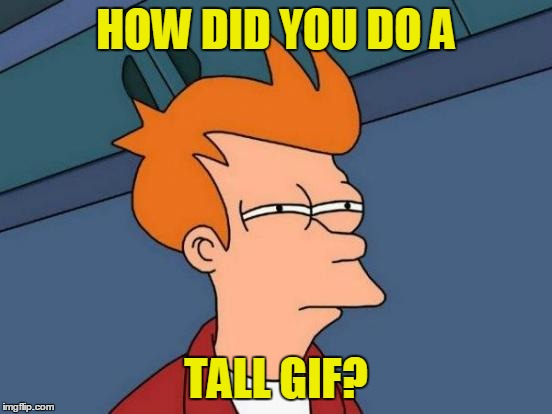 Futurama Fry Meme | HOW DID YOU DO A TALL GIF? | image tagged in memes,futurama fry | made w/ Imgflip meme maker