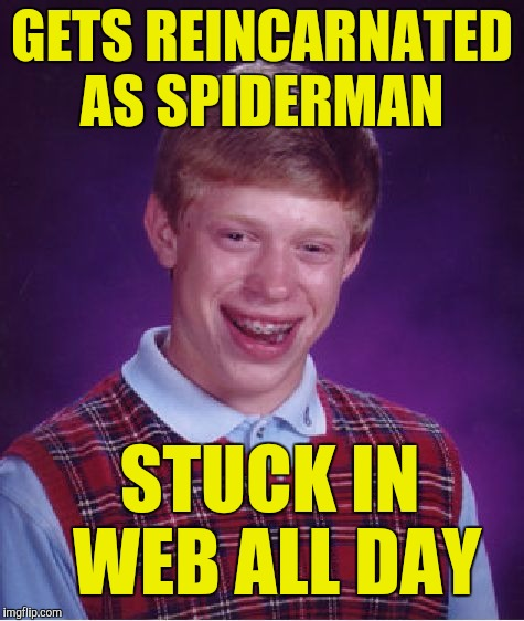 Bad Luck Brian Meme | GETS REINCARNATED AS SPIDERMAN STUCK IN WEB ALL DAY | image tagged in memes,bad luck brian | made w/ Imgflip meme maker