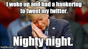 Trump Sleeping  | I woke up and had a hankering to tweet my twitter. Nighty night. | image tagged in trump sleeping | made w/ Imgflip meme maker