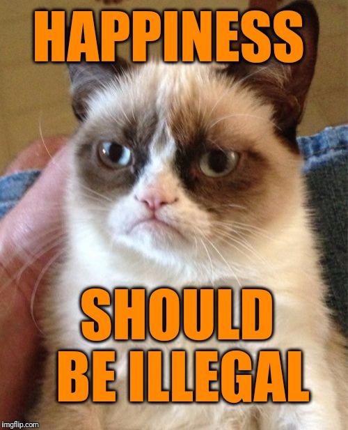 Grumpy Cat Meme | HAPPINESS SHOULD BE ILLEGAL | image tagged in memes,grumpy cat | made w/ Imgflip meme maker