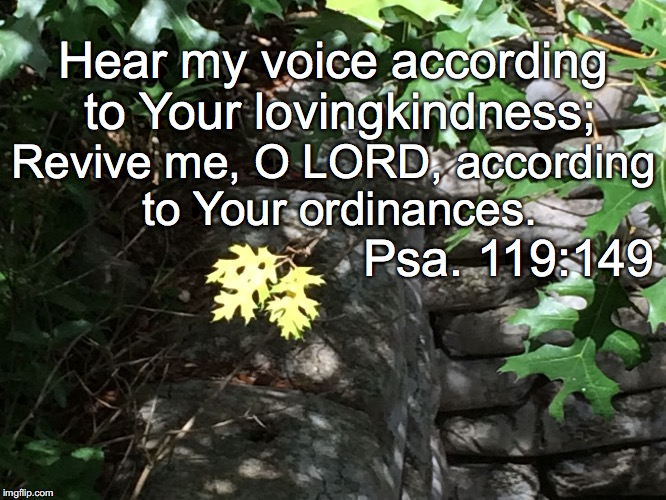 Hear my voice according to Your lovingkindness; Revive me, O LORD, according to Your ordinances. Psa. 119:149 | image tagged in voice | made w/ Imgflip meme maker