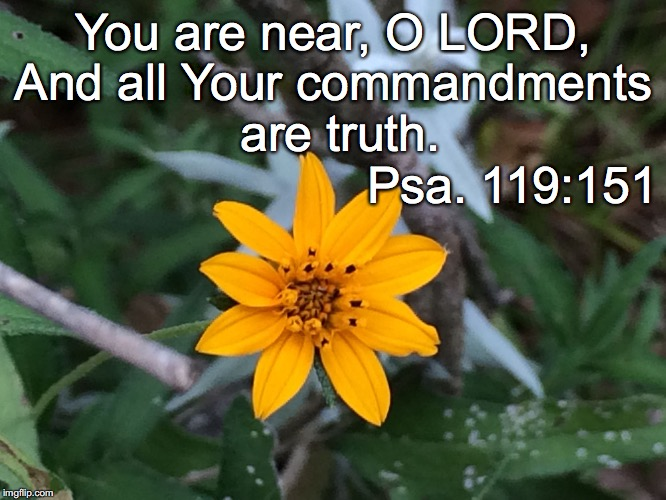 You are near, O LORD, And all Your commandments are truth. Psa. 119:151 | image tagged in near | made w/ Imgflip meme maker