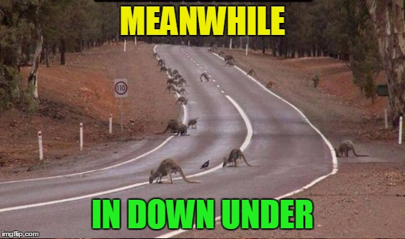 MEANWHILE IN DOWN UNDER | made w/ Imgflip meme maker