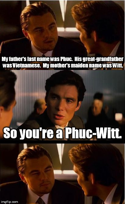 Better than a nitwit or a half-wit? | My father's last name was Phuc.  His great-grandfather was Vietnamese.  My mother's maiden name was Witt. So you're a Phuc-Witt. | image tagged in memes,inception | made w/ Imgflip meme maker