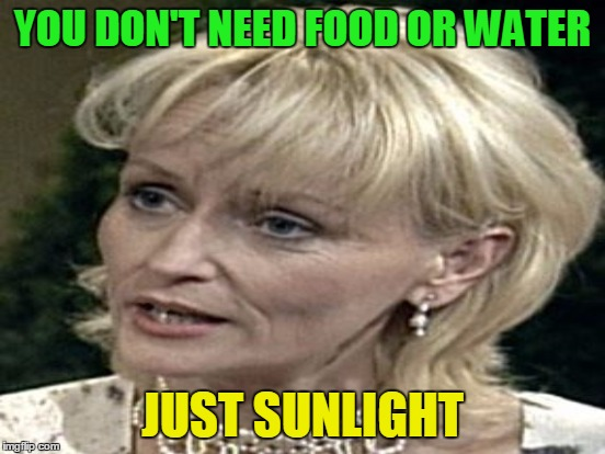 YOU DON'T NEED FOOD OR WATER JUST SUNLIGHT | made w/ Imgflip meme maker