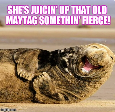 SHE'S JUICIN' UP THAT OLD MAYTAG SOMETHIN' FIERCE! | made w/ Imgflip meme maker