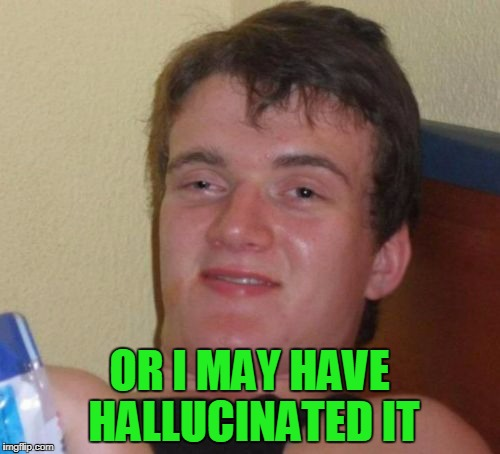 10 Guy Meme | OR I MAY HAVE HALLUCINATED IT | image tagged in memes,10 guy | made w/ Imgflip meme maker