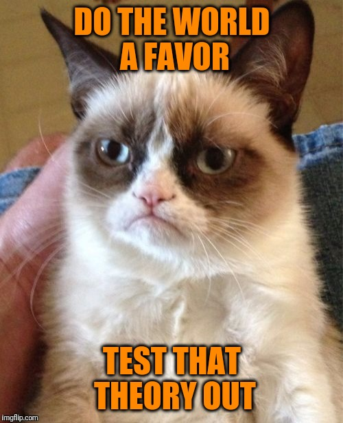 Grumpy Cat Meme | DO THE WORLD A FAVOR TEST THAT THEORY OUT | image tagged in memes,grumpy cat | made w/ Imgflip meme maker
