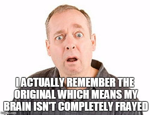 I ACTUALLY REMEMBER THE ORIGINAL WHICH MEANS MY BRAIN ISN'T COMPLETELY FRAYED | made w/ Imgflip meme maker