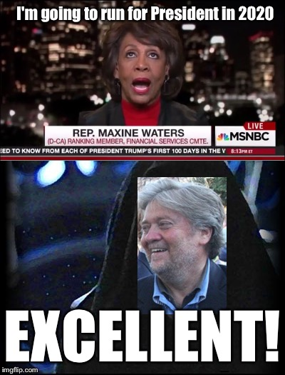 Just like bullseyeing womp rats in my T-16 back home | I'm going to run for President in 2020 EXCELLENT! | image tagged in starwars,maxine waters,steve bannon | made w/ Imgflip meme maker