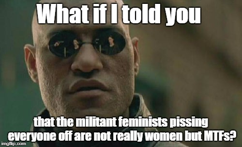 Seriously, real women don't act like that... | What if I told you that the militant feminists pissing everyone off are not really women but MTFs? | image tagged in memes,matrix morpheus | made w/ Imgflip meme maker