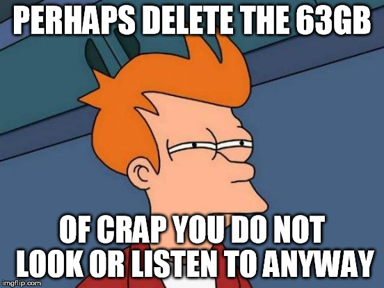 Futurama Fry Meme | PERHAPS DELETE THE 63GB OF CRAP YOU DO NOT LOOK OR LISTEN TO ANYWAY | image tagged in memes,futurama fry | made w/ Imgflip meme maker