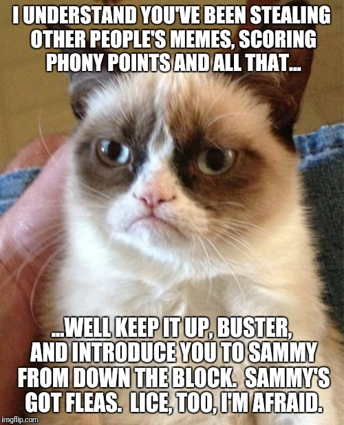 Grumpy Cat Meme | I UNDERSTAND YOU'VE BEEN STEALING OTHER PEOPLE'S MEMES, SCORING PHONY POINTS AND ALL THAT... ...WELL KEEP IT UP, BUSTER, AND INTRODUCE YOU T | image tagged in memes,grumpy cat | made w/ Imgflip meme maker