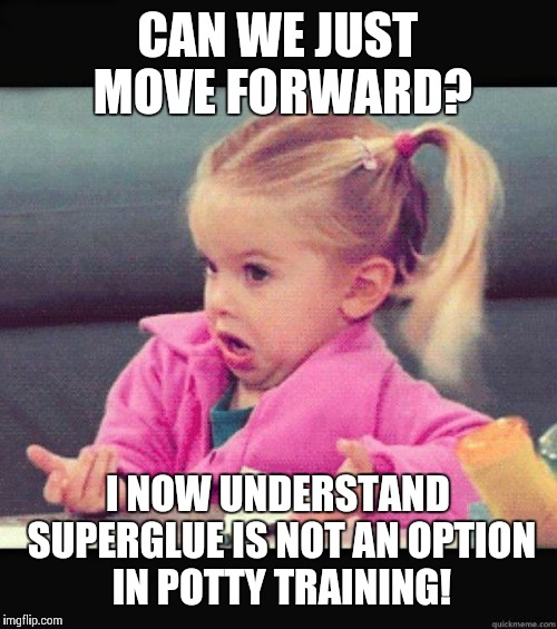 Superglue Is Not An Option | CAN WE JUST MOVE FORWARD? I NOW UNDERSTAND SUPERGLUE IS NOT AN OPTION IN POTTY TRAINING! | image tagged in idk girl | made w/ Imgflip meme maker
