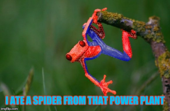 I ATE A SPIDER FROM THAT POWER PLANT | made w/ Imgflip meme maker