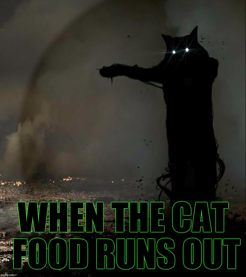 Godzilla Cat | WHEN THE CAT FOOD RUNS OUT | image tagged in godzilla cat | made w/ Imgflip meme maker