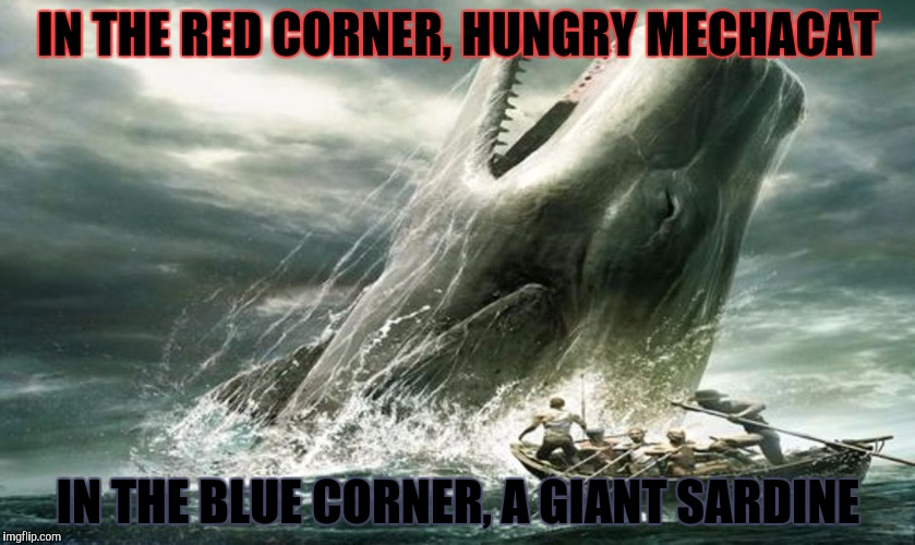 IN THE RED CORNER, HUNGRY MECHACAT IN THE BLUE CORNER, A GIANT SARDINE | made w/ Imgflip meme maker