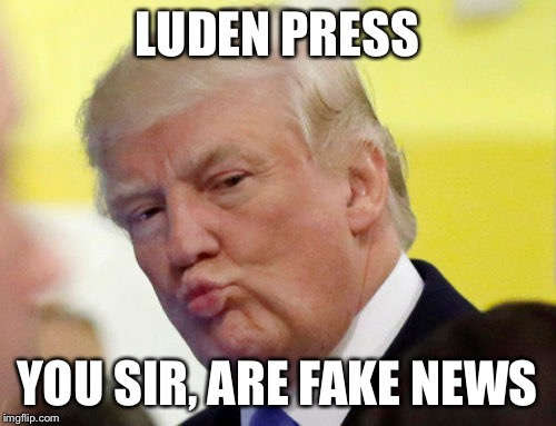 Rule thirty four | LUDEN PRESS YOU SIR, ARE FAKE NEWS | image tagged in rule thirty four | made w/ Imgflip meme maker