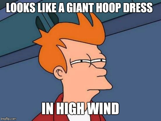 Futurama Fry Meme | LOOKS LIKE A GIANT HOOP DRESS IN HIGH WIND | image tagged in memes,futurama fry | made w/ Imgflip meme maker