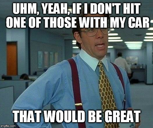 That Would Be Great Meme | UHM, YEAH, IF I DON'T HIT ONE OF THOSE WITH MY CAR THAT WOULD BE GREAT | image tagged in memes,that would be great | made w/ Imgflip meme maker