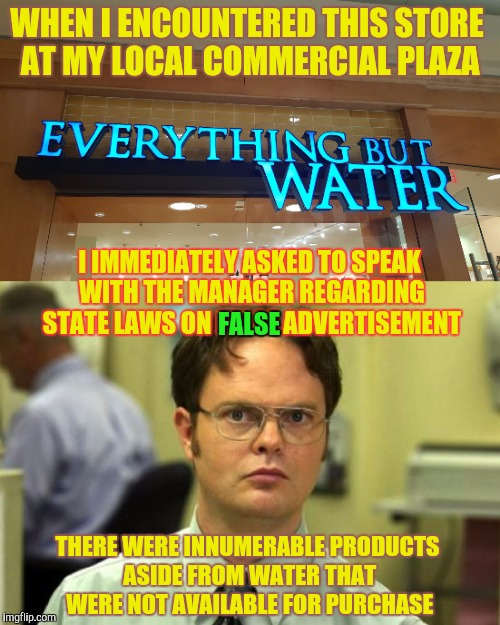 Schrute v. Burlington Mall, LLC. | WHEN I ENCOUNTERED THIS STORE AT MY LOCAL COMMERCIAL PLAZA I IMMEDIATELY ASKED TO SPEAK WITH THE MANAGER REGARDING STATE LAWS ON FALSE ADVER | image tagged in memes,funny,dwight schrute,phunny,burlington massachusetts,the mall | made w/ Imgflip meme maker