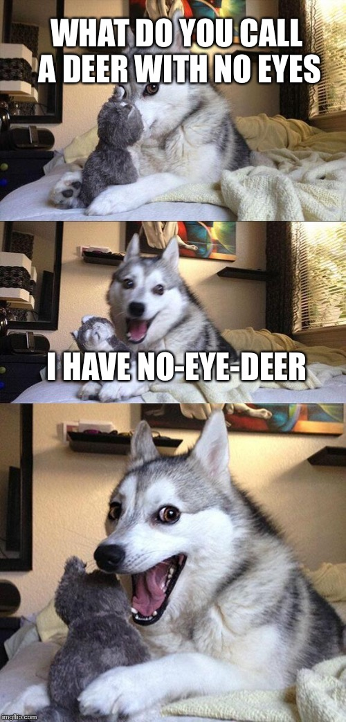 Bad Pun Dog Meme | WHAT DO YOU CALL A DEER WITH NO EYES I HAVE NO-EYE-DEER | image tagged in memes,bad pun dog | made w/ Imgflip meme maker