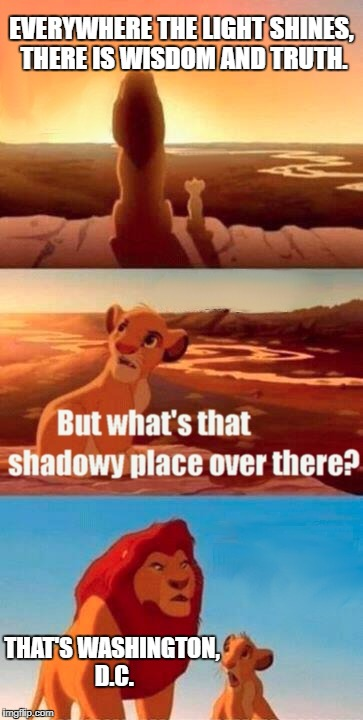 Simba Shadowy Place Meme | EVERYWHERE THE LIGHT SHINES, THERE IS WISDOM AND TRUTH. THAT'S WASHINGTON, D.C. | image tagged in memes,simba shadowy place | made w/ Imgflip meme maker