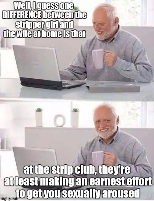 Well, I guess one DIFFERENCE between the stripper girl and the wife at home is that at the strip club, they're at least making an earnest ef | made w/ Imgflip meme maker