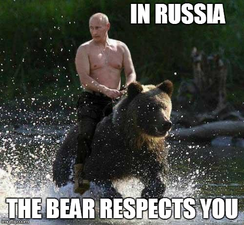 Putin Thats Cute | IN RUSSIA THE BEAR RESPECTS YOU | image tagged in putin thats cute | made w/ Imgflip meme maker