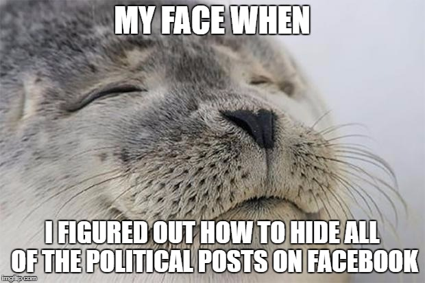 Satisfied Seal Meme | MY FACE WHEN I FIGURED OUT HOW TO HIDE ALL OF THE POLITICAL POSTS ON FACEBOOK | image tagged in memes,satisfied seal | made w/ Imgflip meme maker