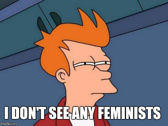 Futurama Fry Meme | I DON'T SEE ANY FEMINISTS | image tagged in memes,futurama fry | made w/ Imgflip meme maker