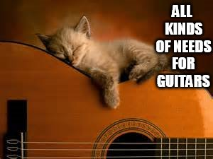 Need for Guitars | ALL KINDS OF NEEDS FOR GUITARS | image tagged in memes,kitten,cat nap,guitar,cat memes,cute kitten | made w/ Imgflip meme maker